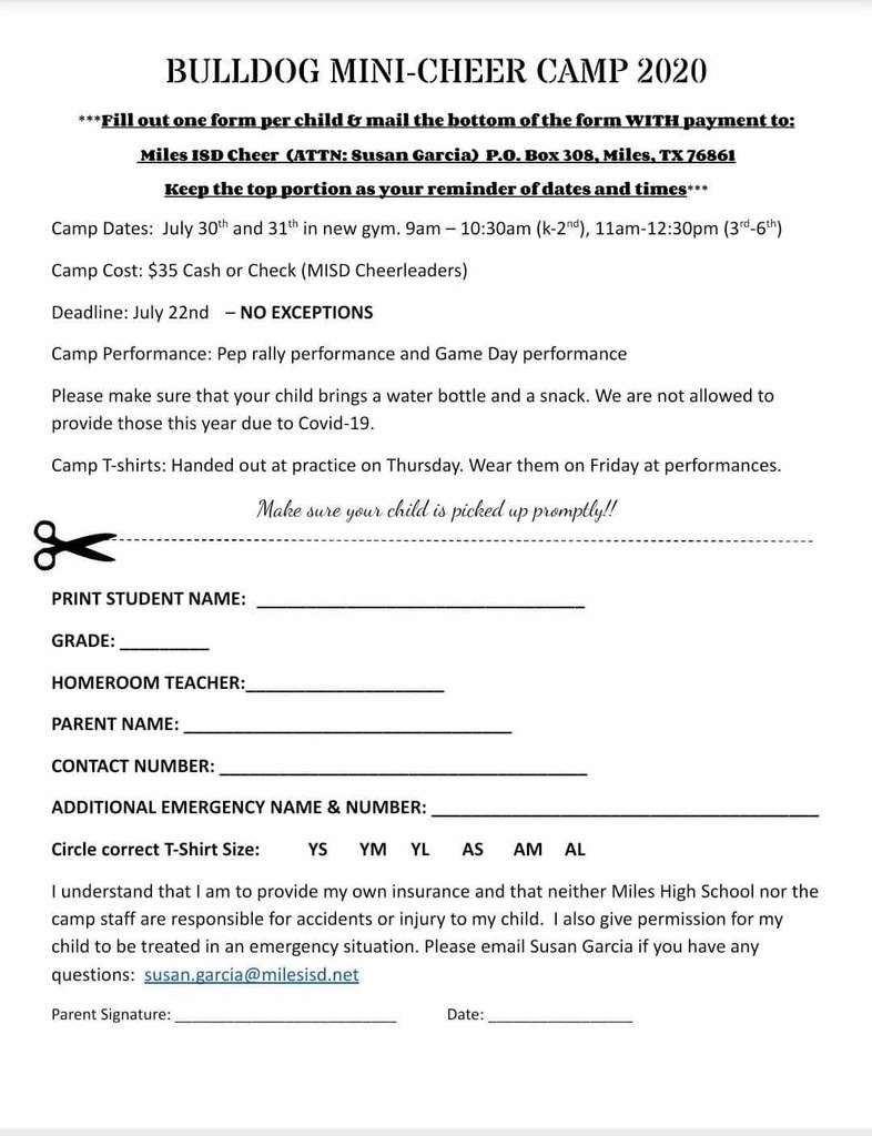 mini cheer camp 2020
